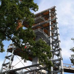 Aussichtsturm des Baumkronenpfads