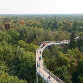 Blick vom Aussichtsurm des Baumkronenpfads.